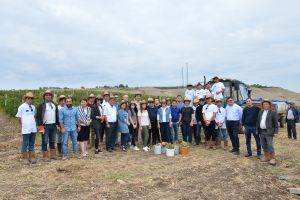 Workshop with project partners on the occasion of the harvesting from the 2-hectare demonstration vineyard