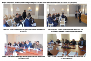 Project preparation workshop with Pomegranate producers and other relevant stakeholders