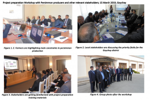 Project preparation Workshop with Persimmon producers and other relevant stakeholders